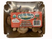 Mousam Valley Organic Shiitake Mushrooms
