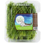 Jonathan's Sprouts Organic Wheat Grass