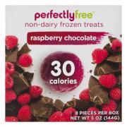 Perfectly Free Raspberry Chocolate Non-Dairy Frozen Bites