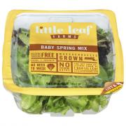 Little Leaf Farm Spring Mix