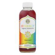 GT's Synergy Organic & Raw Trilogy