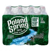 Poland Spring Sport Spring Water