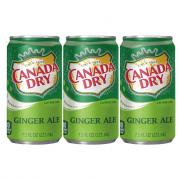 Canada Dry Ginger Ale Mini