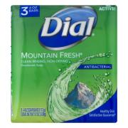 Dial Mountain Fresh Bar Soap