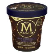 Magnum Milk Chocolate Hazelnut Tub