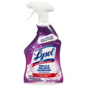 Lysol Mold & Mildew Foamer with Bleach