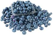 Native Cultivated Blueberries