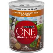 Purina ONE Chicken & Rice in Gravy