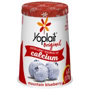 Yoplait Blueberry Yogurt