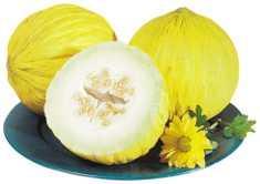 Casaba Melons