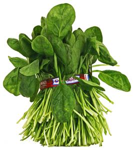 Bunched Spinach