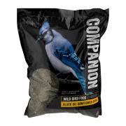 Companion Black Oil Sunflower Seeds Wild Bird Food