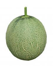 Persian Melons