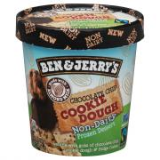 Ben & Jerry's Non-Dairy Chocolate Chip Cookie Dough