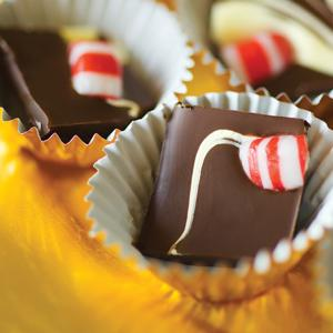 Carolyn Faye Fox`s Double Chocolate Peppermint Bark