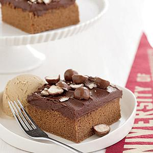 Malted Milk Cake with Malted Chocolate Frosting