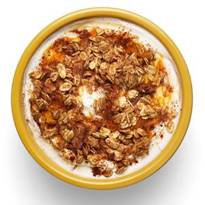 Pumpkin Spice Yogurt