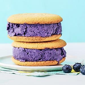 Blueberry-Buttermilk Sherbet
