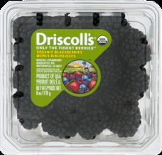 Driscoll's Limited Edition Sweet Blackberries