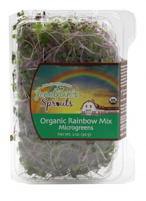 Organic Rainbow Mix Microgreens
