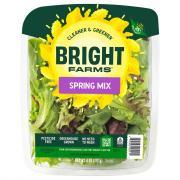 Bright Farms Spring Mix