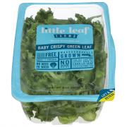 Little Leaf Farms Baby Crispy Green Leaf Lettuce