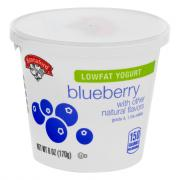 Hannaford Lowfat Yogurt Blueberry