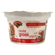 Hannaford Greek Nonfat Pomegranate Yogurt