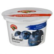Hannaford Greek Nonfat Blueberry Yogurt