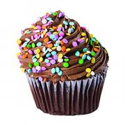 Jumbo Chocolate Cupcake With Chocolate Best Creme Icing