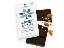 Lake Champlain Organic Sea Salt Almond Chocolate