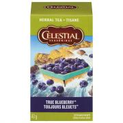 Celestial Seasonings True Blueberry Tea Bags