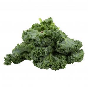 Hydropnic Baby Kale