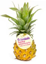 Frieda's Baby Pineapple