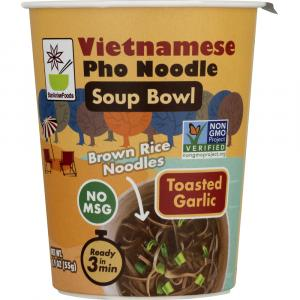 Star Anise Vietnamese Pho Noodle Soup Bowl Toasted Garlic