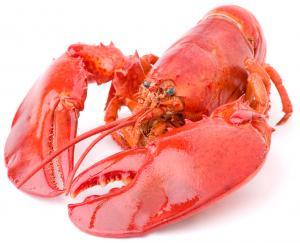 Grab & Go Lobster