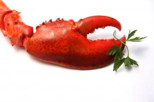 Local Frozen Gulf Of Maine Cooked Claw & Knuckle Lobster