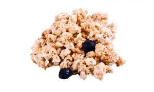 Golden Temple Blueberry Granola