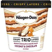 Haagen-Dazs Trio Coconut Caramel Dark Chocolate Ice Cream
