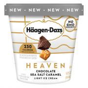 Haagen-Dazs Heaven Chocolate Sea Salt Caramel LightIce Cream