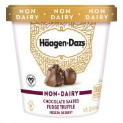 Haagen Dazs Non-Dairy Chocolate Salted Fudge Truffle