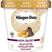Haagen-Dazs Non-Dairy Peanut Butter Chocolate Fudge