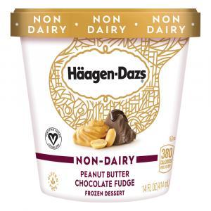 Haagen-Dazs Non-Dairy Peanut Butter Chocolate Fudge