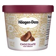Haagen-Dazs Chocolate Ice Cream