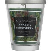 Aromascape Cedar + Evergreen Soy Wax Blend Candle