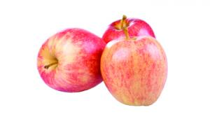 Gala Apple Snaq Bag