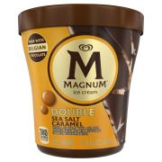 Magnum Tub Double Sea Salt Caramel Ice Cream