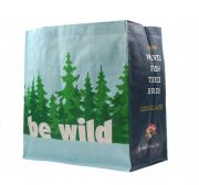Hannaford Reusable Bag