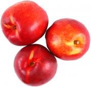 Organic White Nectarine