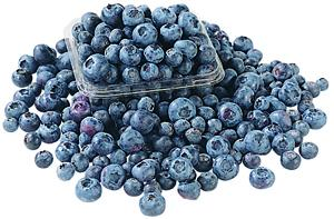 Maine Select Wild Blueberries